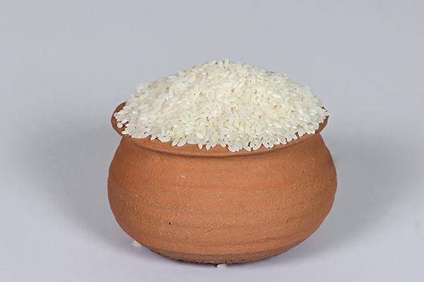 Gobindo Bhog Rice   SDLG Radiant Pvt  Ltd